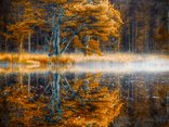 jesienny widoczek