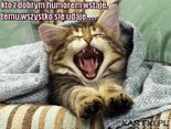 kto z dobrym humorem wstaje,temu wszystko się udaje...