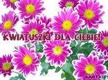 Kwiatuszki dla Ciebie!