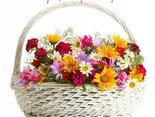 kwiaty Ci przynoszę...uśmiechnij się!