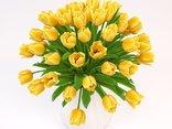 Kwiaty dla Moniki