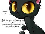 Ludzie w swej słabości zaklinają rzeczywistość, bo najłatwiej jest zrzucić wszystko na bogu ducha winnego, czarnego kota.