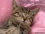 milutkiego spanka...