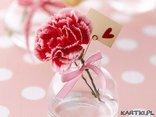 Mowa kwiatow: Goździk różowy - nigdy o Tobie nie zapomnę. ...