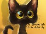 """""""Mówią nie poszczęści się, czarny kot ci przeszedł drogę - będzie źle. Jest na opak, wierzcie, że to czarnemu kotu tak nie wiedzie się"""""""