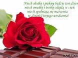 Niech słodki i piękny będzie ten dzień, niech smutki i troski odejdą w cień, niech spełniają się marzenia  w dzień Twojego urodzenia!