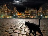 Nocny łowca