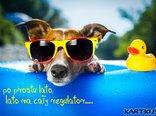 """""""po prostu lato, lato na cały regulator...."""""""
