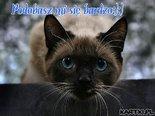 Podobasz mi się :):)