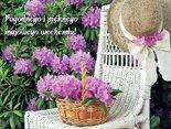Pogodnego i pięknego majowego weekendu!