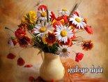 polne kwiatki dla Ciebie...takie jak lubisz...