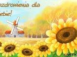 Pozdrawiam Cię słonecznie