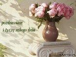 pozdrawiam i życzę miłego dnia
