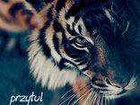 przytul swojego tygryska...