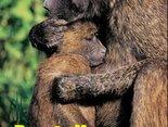 Przytulisz mnie?