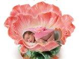 Słodki kwiatuszek