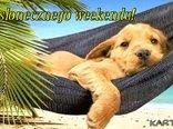 słoneczneo weekendu!