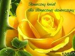 Słoneczny kwiat dla słonecznej dziewczyny