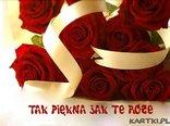Tak piękna jak te róże