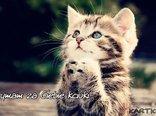 trzymam za Ciebie kciuki...