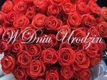 Urodzinowe róże i najpiękniejsze życzenia przesyłam