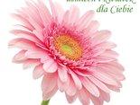 uśmiech i kwiatek  dla Ciebie