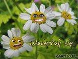 Uśmiechnij  się !Dzisiaj będzie dobry dzień !
