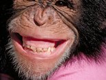 Uśmiechnij się tylko