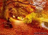 w parku jesienią cudnie jest...