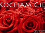 Walentynkowe róże dla Ciebie
