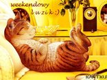 weekendowy luzik
