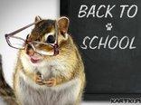 wracamy do szkoły