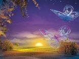 Magical-sunset