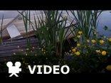 Miłość wiosną -Andre Rieu