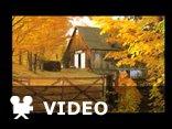 Romance-Andre Rieu